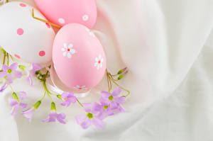Фотографии Праздники Пасха Яйца