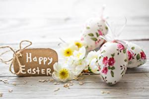 Обои Праздники Пасха Английский Яйца Дизайн