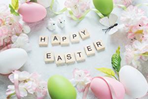 Картинки Праздники Пасха Цветущие деревья Английский Яйца