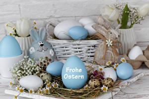 Картинка Праздники Пасха Кролики Ромашки Яйца Гнездо Немецкий Корзинка
