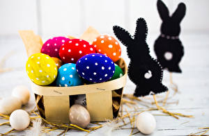 Фотографии Праздники Пасха Кролики Яйца Дизайн