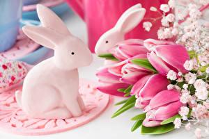 Картинка Праздники Пасха Кролики Тюльпаны Розовый Цветы