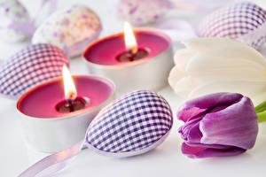 Картинка Праздники Пасха Тюльпаны Свечи Яйца