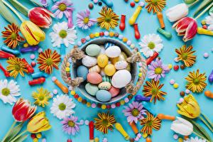 Фотография Праздники Пасха Тюльпаны Хризантемы Конфеты Шар