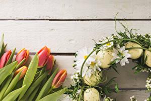 Картинка Праздники Пасха Тюльпаны Хризантемы Доски Яйца