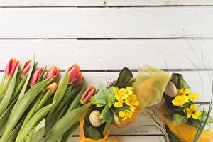 Картинка Праздники Пасха Тюльпаны Первоцвет Доски Яйца Цветы