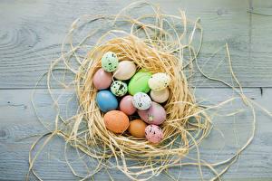 Картинка Праздники Пасха Доски Гнездо Яйца Еда