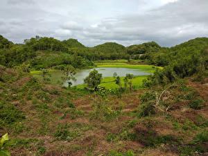 Картинки Индонезия Тропики Озеро Леса Yogyakarta Природа
