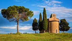 Фотография Италия Тоскана Храмы Деревья San Quirico d'Orcia Природа