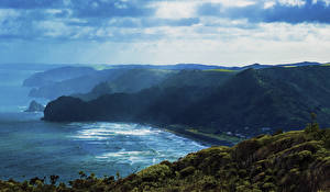 Фото Новая Зеландия Побережье Волны Скала Мох Piha Auckland Region Природа
