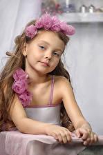 Картинка Розы Девочки Модель Смотрит Ребёнок