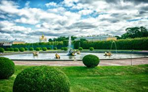 Картинки Россия Санкт-Петербург Парки Фонтаны Дизайн Кусты Газон Petergof Природа