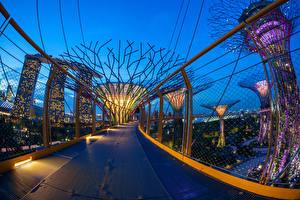 Фотографии Сингапур Парки Мосты Ограда Уличные фонари Gardens by the Bay Природа