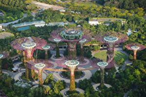 Обои Сингапур Парки Дизайн Сверху Gardens by the Bay Природа