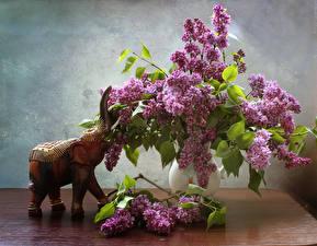 Картинка Натюрморт Букеты Сирень Слоны Цветы