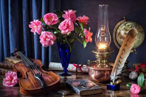Картинки Натюрморт Камелия Керосиновая лампа Скрипки Перья Ваза Очки Книга Цветы