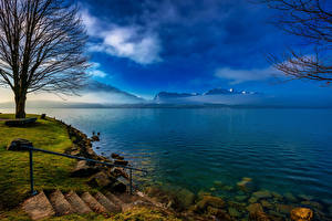 Картинка Швейцария Озеро Побережье Камни Лестница Thun Природа