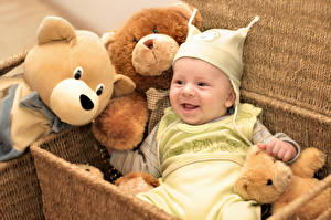 Фотография Игрушки Мишки Корзина Грудной ребёнок Улыбка Дети