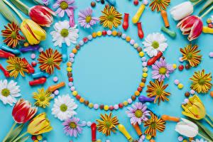 Картинки Тюльпаны Хризантемы Цветной фон Шар