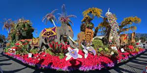 Картинки Штаты Парки Скульптуры Слоны Розы Калифорния Дизайн Pasadena Природа