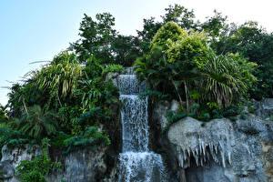 Картинка Водопады Утес Пальмы Naypyidaw Myanmar Природа