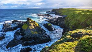 Картинка Австралия Берег Море Утес Phillip Island Природа
