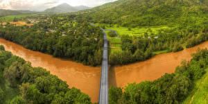 Фото Австралия Речка Леса Мосты Barron River Природа