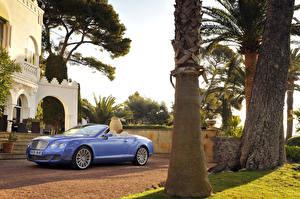 Фото Bentley Кабриолета Металлик Дорогие 2009 Continental GTC Speed машины