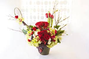 Фотография Букеты Розы Орхидеи Гортензия Цветы