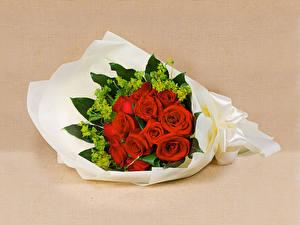 Обои Букеты Розы Красный Цветной фон Цветы
