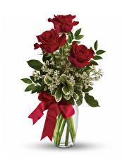 Фотография Букет Роза Вазы Бордовые Бантики Белый фон цветок