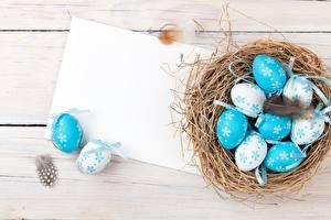 Обои Пасха Яйца Гнездо Шаблон поздравительной открытки