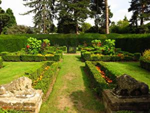 Фотографии Англия Парки Скульптуры Львы Лондон Дизайн Кусты Газон Capel Manor Gardens Природа