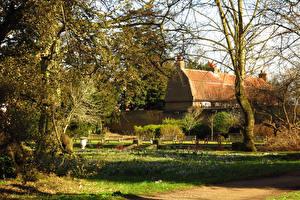 Фотографии Англия Парки Весна Лондон Деревья Cannizaro Park Природа