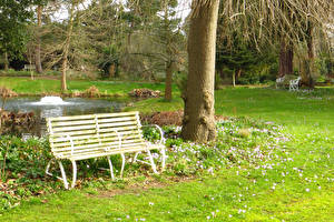 Фотографии Англия Парки Весенние Лондон Скамья Ствол дерева Myddelton House Gardens Природа