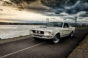 Фотографии Ford Mustang GT350 1967 Shelby Машины