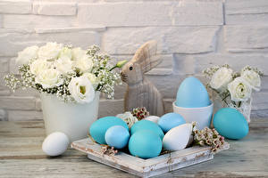 Фотография Праздники Пасха Букеты Эустома Кролики Стенка Яйца
