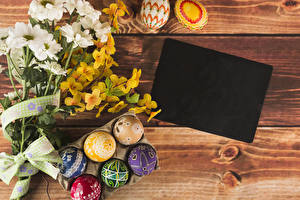 Картинка Праздники Пасха Хризантемы Доски Шаблон поздравительной открытки Ветвь Яйца Дизайн Цветы