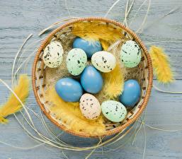 Картинки Праздники Пасха Перья Доски Яйца Гнездо