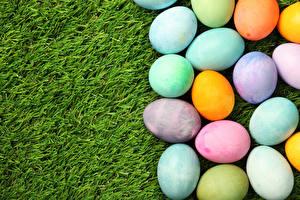 Обои Праздники Пасха Трава Яйца