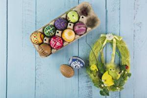 Фотографии Праздники Пасха Птенец Доски Яйцами Разноцветные Дизайн Гнездо