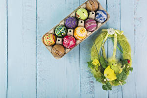 Фотография Праздники Пасха Птенец Доски Яйцами Дизайн Гнезда