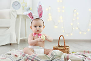 Картинки Праздники Пасха Кролики Яйца Младенца Корзина Ребёнок
