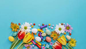 Картинка Праздники Пасха Тюльпаны Хризантемы Конфеты Цветной фон Яйца