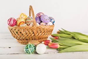 Фотография Праздники Пасха Тюльпан Яйцами Корзины