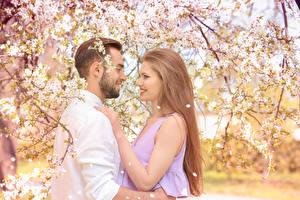 Фото Любовь Мужчины Цветущие деревья Двое Русые Улыбка Девушки