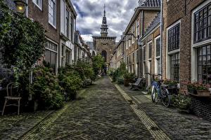 Обои Нидерланды Здания Храмы Церковь Улица Кусты Haarlem