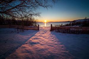 Фотография Норвегия Рассветы и закаты Зима Снег Забор Солнце Ветки Sulitjelma Природа