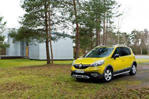 Фото Renault Желтый 2013 Scenic XMOD Авто