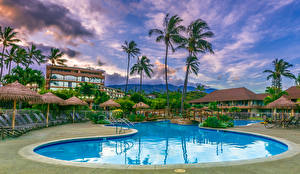 Фотографии Курорты Здания Гавайи Плавательный бассейн Пальмы Maui